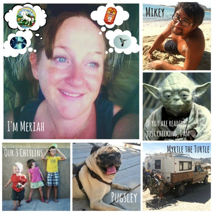 A grid of six photos arranged to show members of Meriah's family, herself, yoda, her children, her dog and their camper van.